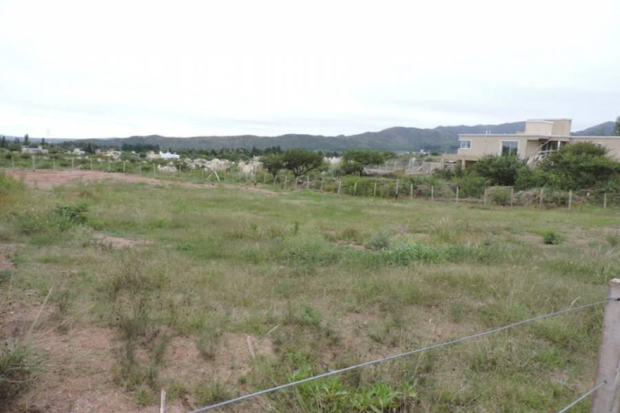 San Luis,San Luis,Lotes,1110