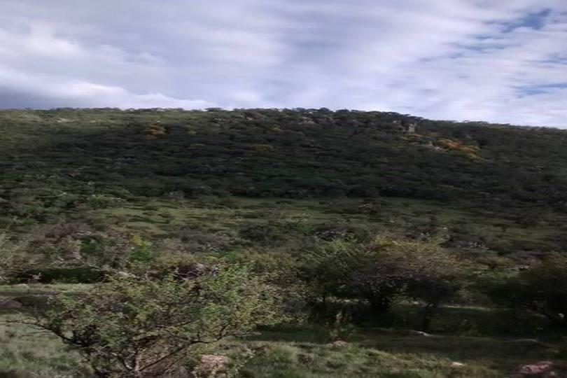 León,Guanajuato,México,Fincas-Villas,carretera de comanja,2737