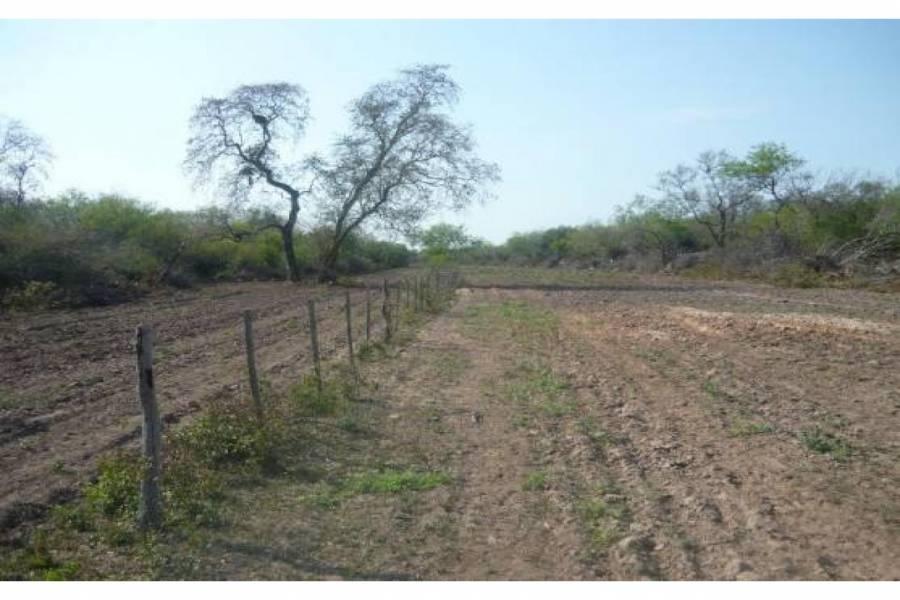 Pampa del Infierno,Chaco,Campos,Ruta 16,1503