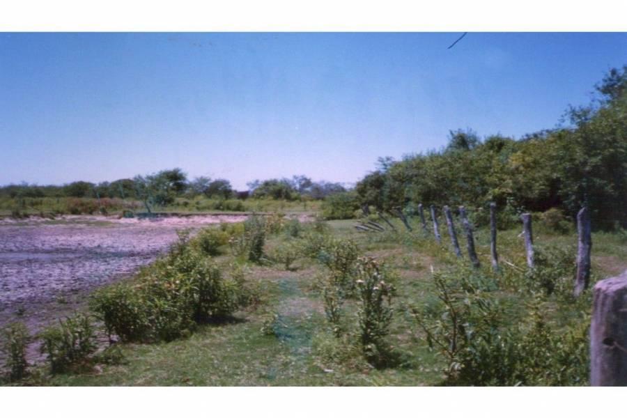 Pinto - Villa General Mitre,Santiago del Estero,Campos,Ruta 34,1608